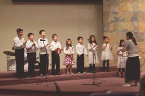 Musical Concert